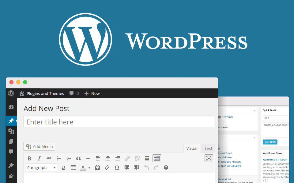 Adding Images to Posts or Pages (WordPress)